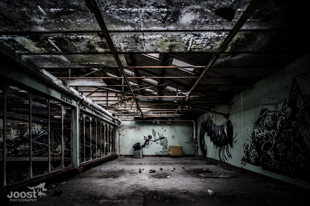 Skeleton Factory by © JoostVH Photography